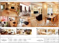 グラフィック 雑誌広告
